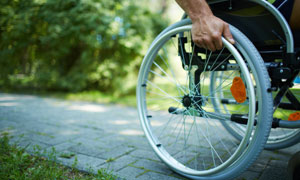 disability discrimination law